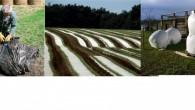 >>>Lieux et dates de collecte des plastiques agricoles 2021, consignes et contacts