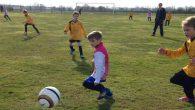 Le Sporting Club de Billom, propose les mercredis de 15h à 17h, des séances de football pour les jeunes de 5 à 13 ans. Contact Daniel VALERO, 04 73 73 […]