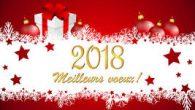 La municipalité de Saint-Julien-de-Coppel a le plaisir d'inviter les Coppelloises et Coppellois à la présentation des vœux pour cette nouvelle année 2018. Les nouveaux habitants pourront se présenter et les […]