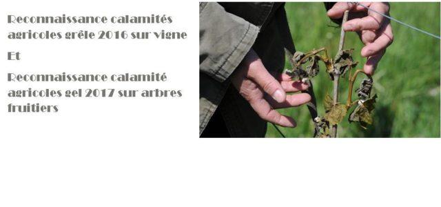 Pour solliciter une demande d'indemnisation au titre de la perte de fonds, il faut déposer un dossier de demande auprès de la Direction Départementale des Territoires du Puy-de-Dôme avant le […]