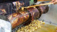 Ce 14 Juillet, plus de 70 convives se sont rassemblés sur «le breuil» pour déguster le jambon à la broche. Une dizaine de vététistes et cavaliers ont aussi fait le […]