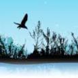 Une consultation du public sur la gestion de l'eau et des risques d'inondation est lancée du 2 novembre 2018 au 2 mai 2019. Cette consultation porte sur : les questions […]