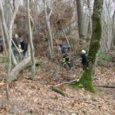 Saint-Julien-de-Coppel – Chiens Courants à l'honneur Une spectaculaire démonstration de chasse a eu lieu sur le territoire communal où sont venus s'exercer quatre-vingts chiens réunis en six meutesle week-end du […]