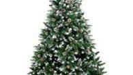 L'amicale laïque de l'école de Saint-Julien-de-Coppel propose une commande groupée pour vos sapins de Noël. Voir les conditions >>