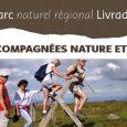 La Maison du Tourisme du Livradois-Forez nous fait parvenir le programme desBalades accompagnées «Nature et Patrimoine»pour le début de ce mois de juillet : balades accompagnées du 1er au 10 […]