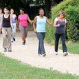 Pour rester en forme, Acti march vous propose via le club de Coudes, de participer avec une éducatrice à des séances de marche active. Les séances se déroulent à Vic […]