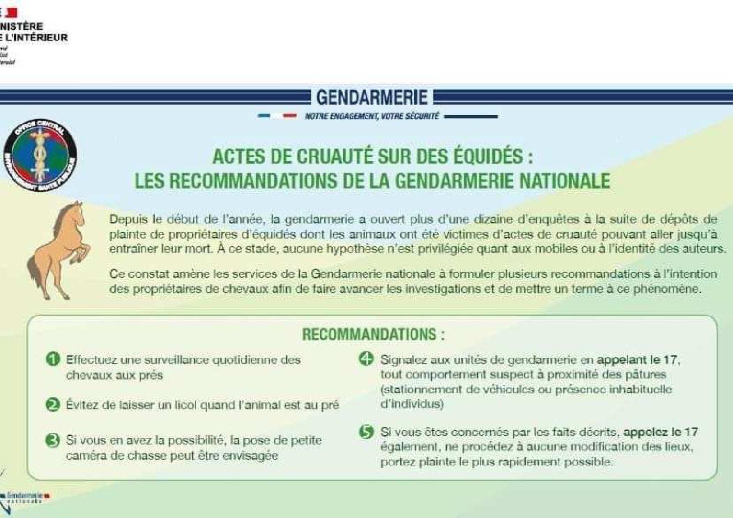 Suites aux actes de cruauté commis depuis le début de l'année sur des équidés, la Gendarmerie Nationale incite les propriétaires de chevaux à être vigilants et leur recommande notamment : […]