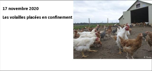 Les volailles placées en confinement Le préfet du Puy-de-Dôme vient de prendre de nouvelles mesures, face au risque d'influenza aviaire, après la détection d'un foyer en Haute-Corse. La préfecture du […]