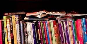 La bibliothèque est ouverte gratuitement à tous : Les samedis de 10h à 12h (hors vacances scolaires) Pour le plaisir des petits lecteurs et des grands, de nouveaux livres et […]
